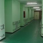 news-pni-koridor-zelenii